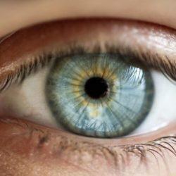 Entendendo A Visão – O Ponto Cego
